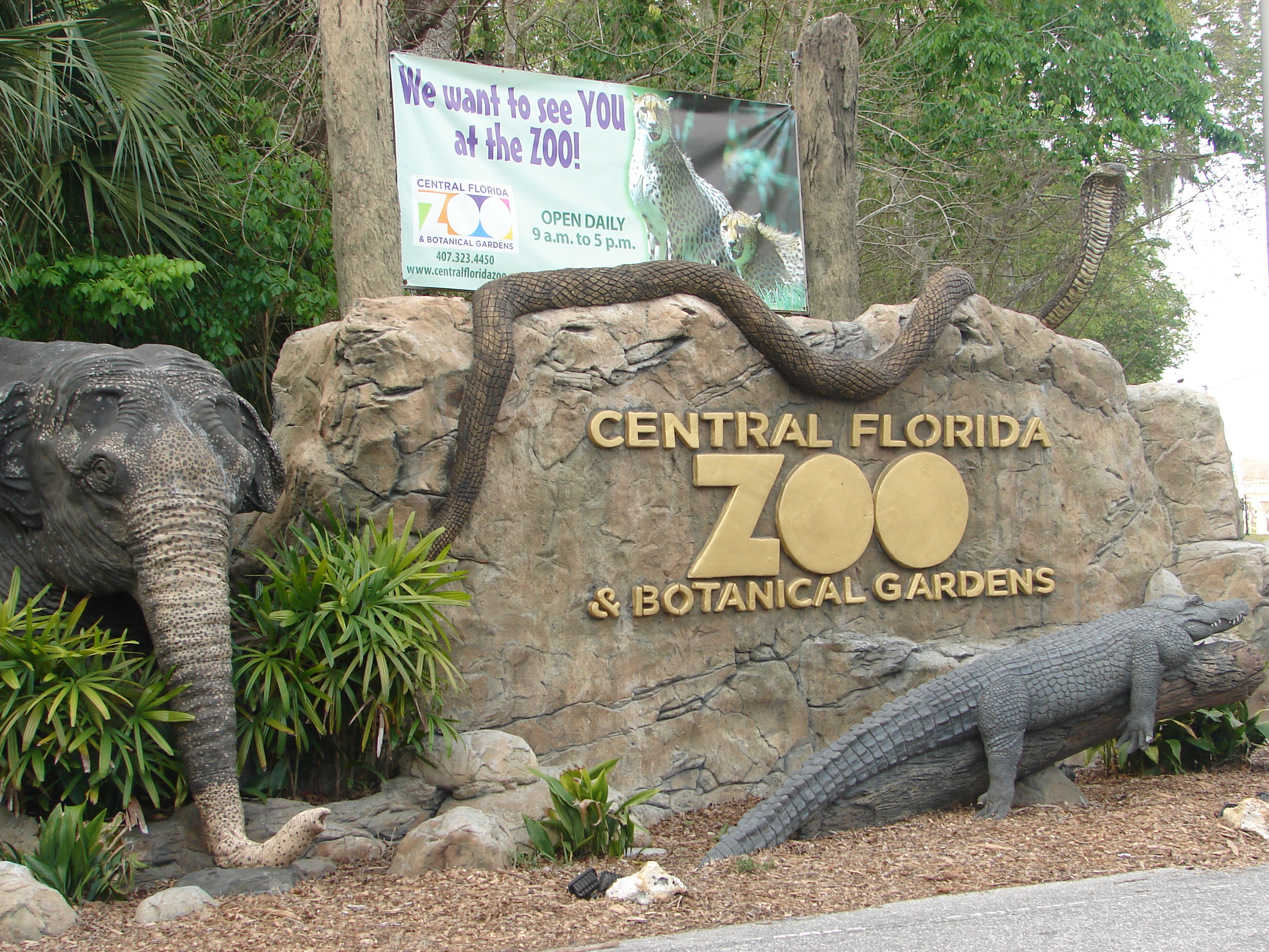 Central Florida Zoo Plans Massive 85 Million Expansion Orlando Rising